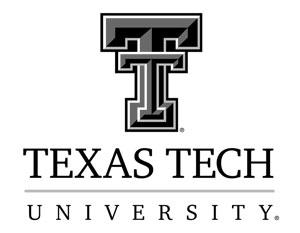 Texas Tech speaking engagements - Laura Okmin